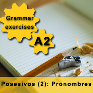 possessive pronouns in Spanish Grammar exercise Spanish pronombres posesivos