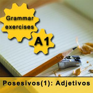 possessive adjectives in Spanish
